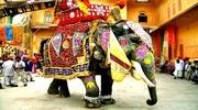 ГРУПОВИЙ ТУР по Індії на фестиваль фарб Холі!