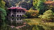ГРУПОВИЙ ТУР: «Токіо + гірськолижний курорт Наеба»