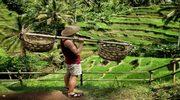3 страны за 2 недели: Куала-Лумпур, Сингапур и райский остров Бали!