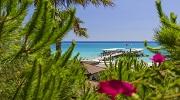 30432 ГРН НА 2 ВЗРОСЛЫХ + 1 РЕБЕНОК КЛАССНЫЙ СЕМЕЙНЫЙ ОТЕЛЬ В ТУРЦИИ  Mukarnas Spa Resort 5*!