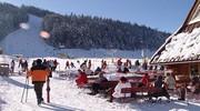 Активный отдых на лыжах !!!