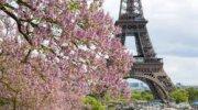 Весенний Париж ждет Вас
