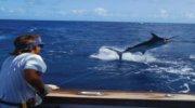 Глибоководна рибалка в ОАЕ