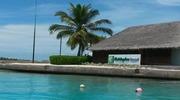 Если и есть где-то рай на земле - то он точно на  Мальдивах.