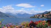 Квітково-фіолетова пригода в Провансі ...