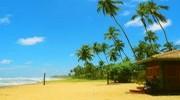 Шрі –Ланка 25.07 на 7 ночей, від 9650грн.,
