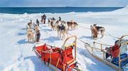 Лапландия - здесь живет Санта !! Новогодний тур !!!
