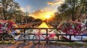 День КОРОЛЯ в Амстердаме! !!