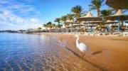 Райский отдых в Доминикане. Заказывайте туры уже сейчас!