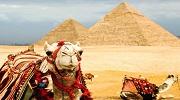 Гарячі пропозиції Єгипет зі Львова, 10 ночей!!