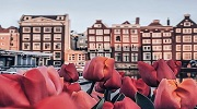 Нові горизонти: Рига, Стокгольм, Копенгаген, Амстердам