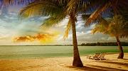 Тенерифе – острів вічної весни !