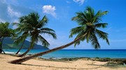 Домініканська Республіка1
