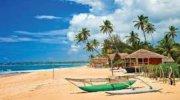 Горит Шри-Ланка на 10 дней!