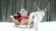 Покоренные красотой… Скандинавия + Волшебный Мир Санты – «парк Томтеленд»!!! (Новый год на пароме!!!)