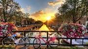 Пикничок в Нидерландах