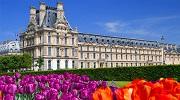 Париж, цветы ..... и Комплименты!