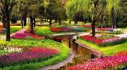 Квіткові королівства