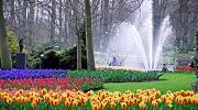 Амстердам - ковток свободи