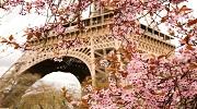 Відрядження до Парижу + Діснейленд