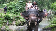 Ловите горящие путевки в Таиланд!