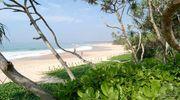 Шрі-Ланка в січні!
