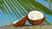 Фестиваль кокоса в Домінікані