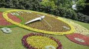 Англійський парк і квітковий годинник
