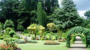 Перадения. Ботанический сад