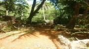 Національний заповідник Сьєрра-де-Баоруко