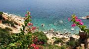 Острів Сардинія