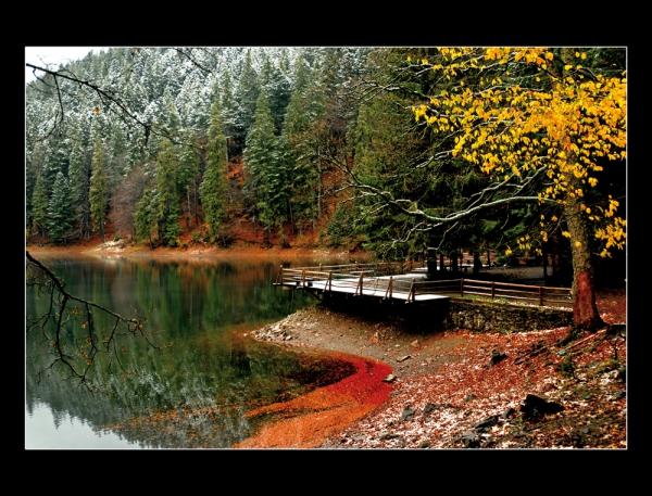 Осінь на синевирі фото фото 203-568